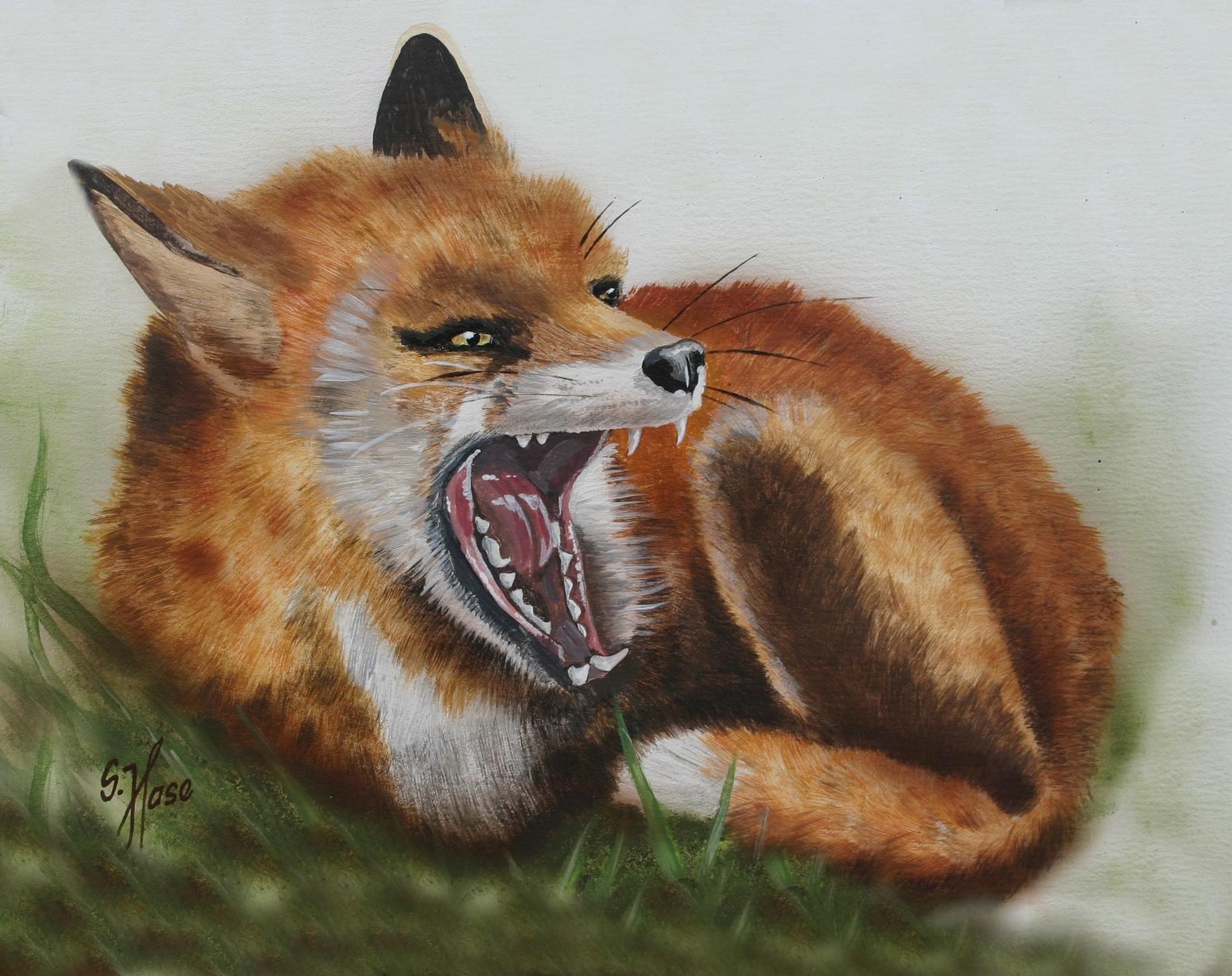 Fuchs-22