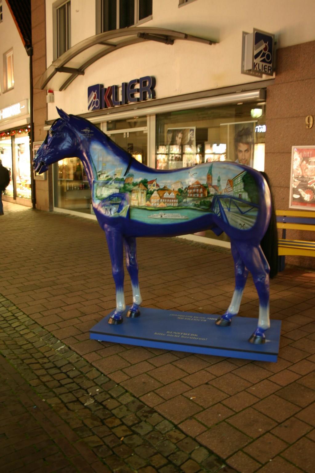 Pferd Nienburg