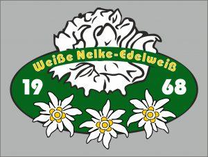 Pin-Weisze-Nelke-Edelweisz-3