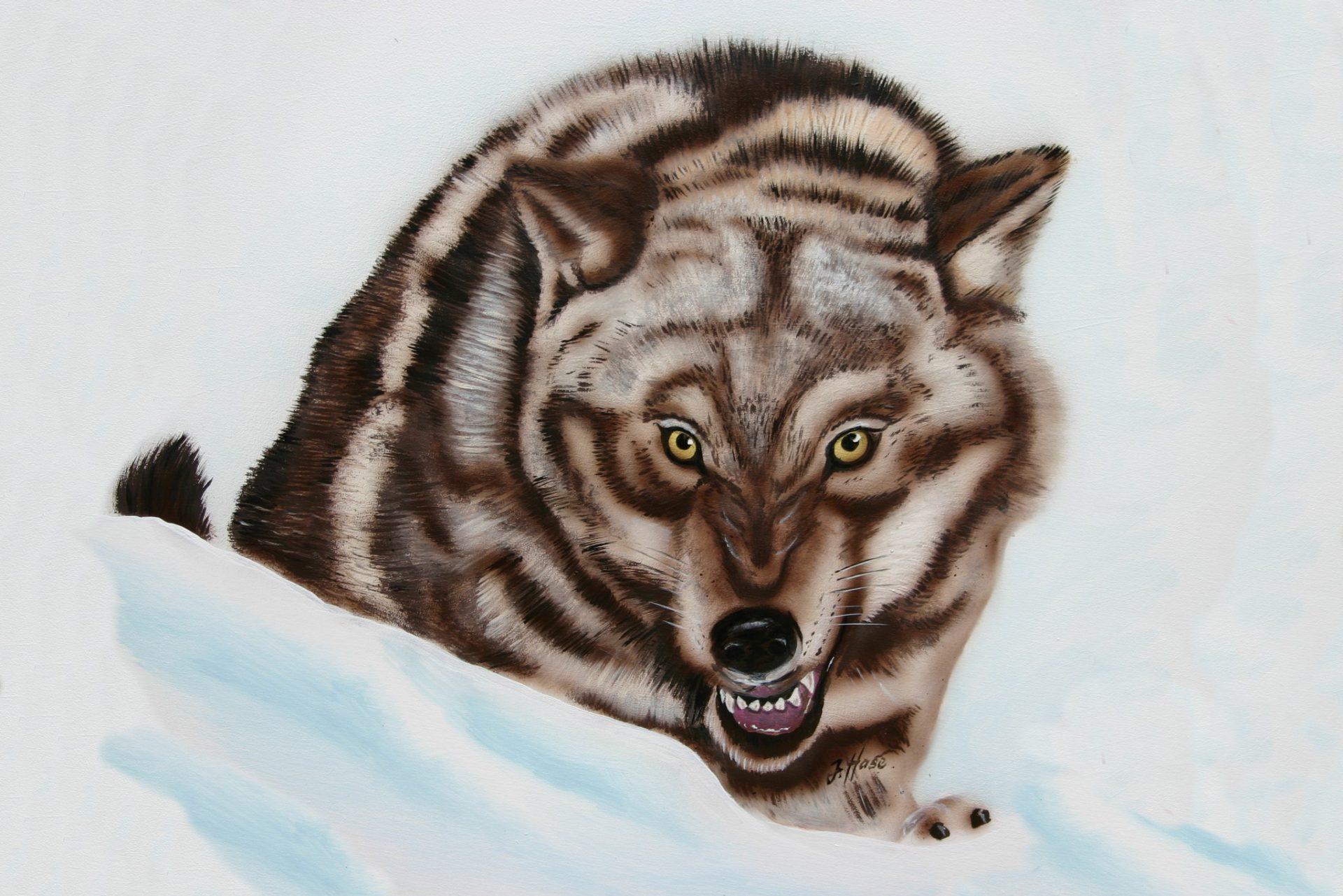 Wolf-im-Schnee