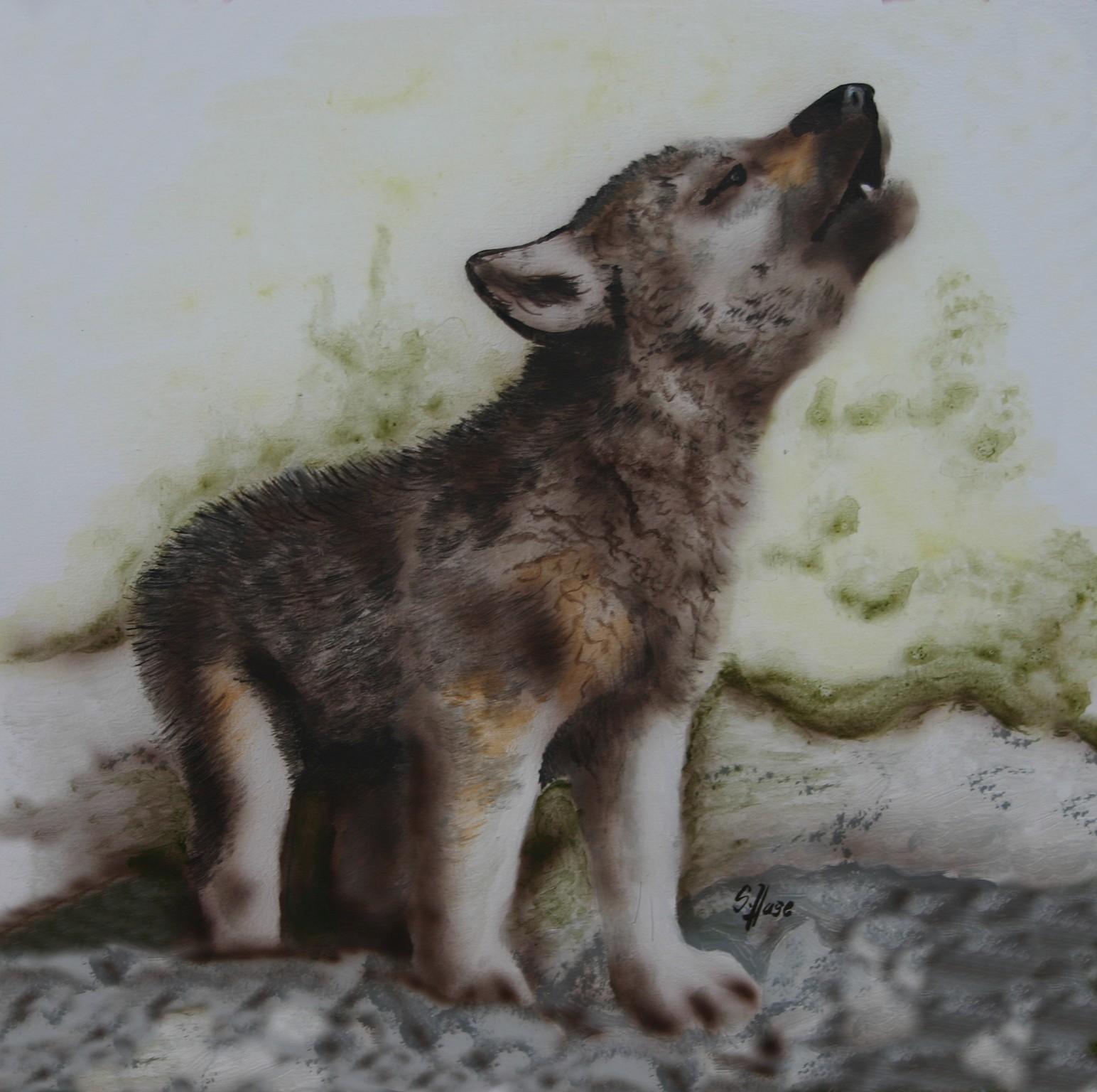 Wolf-klein
